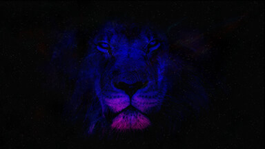Space Lion Google Background