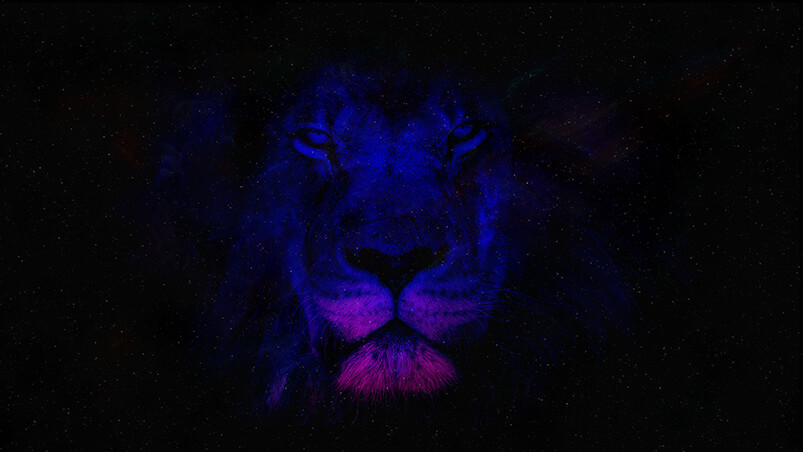 Space Lion Chromebook Wallpaper ...