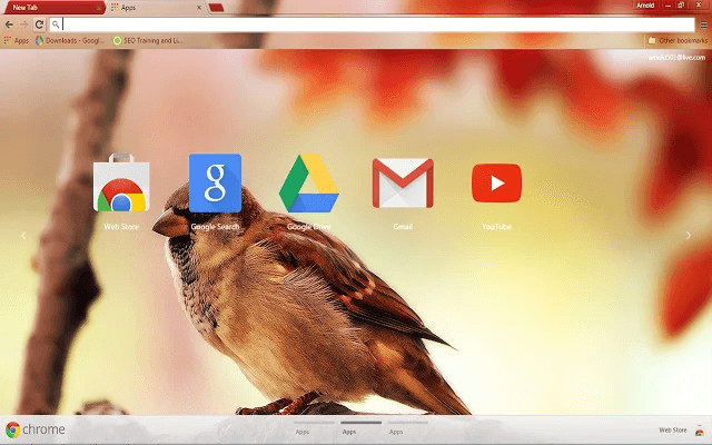 Sparrow - Google Homepage