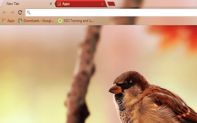 Sparrow - Web Apps