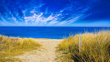 Virginia Beach Google Background