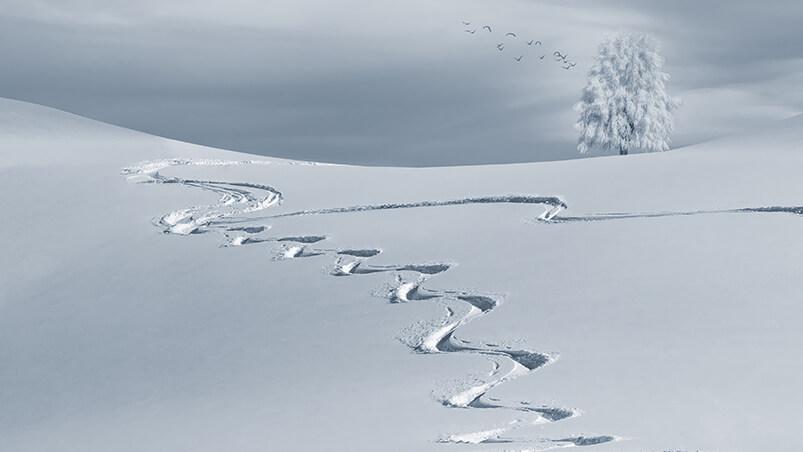 Winter Tracks Google Background ...