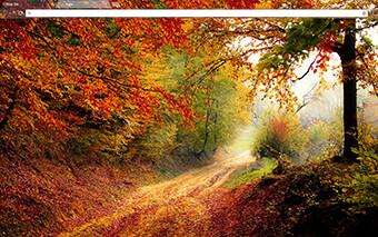 Autumn Road Google Chrome Theme
