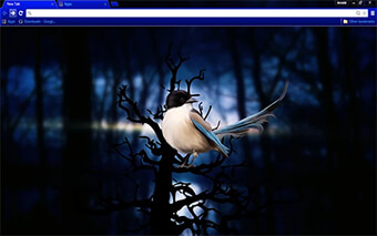 Blue Bird Google Chrome Theme