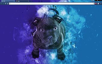 Blue Bull Terrier Google Chrome Theme