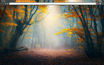 Enchanted Forest Google Chrome Theme