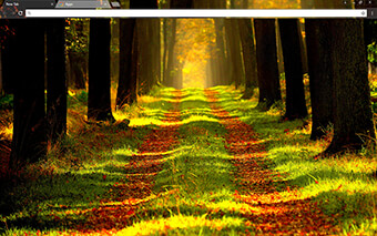 Forest Way Google Chrome Theme