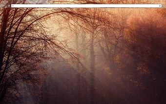 Forestry Google Chrome Theme