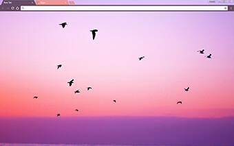 Free Birds Google Chrome Theme