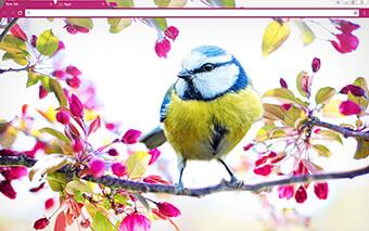 Happy Birdy Google Chrome Theme