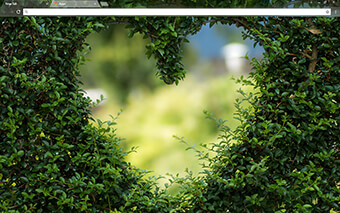 Heartscaping Google Chrome Theme