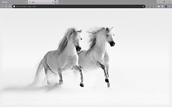 Horses in Snow Google Chrome Theme