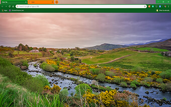 Irish Beauty Google Chrome Theme