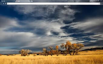 Patagonia Google Chrome Theme