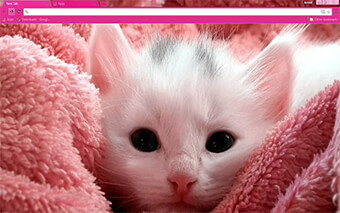 Pink Kitten Google Chrome Theme