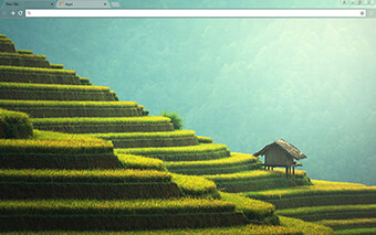 Rice Paddy Google Chrome Theme