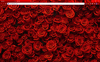 Rosy Red Roses Google Chrome Theme