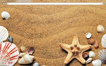 Sea Shells Google Chrome Theme