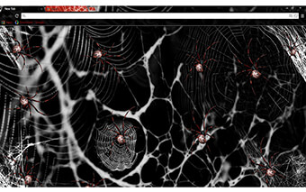 Spiders Google Chrome Theme