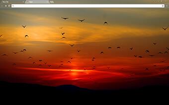 Sunset Google Chrome Theme