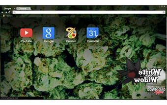 Weed White Widow Google Chrome Theme