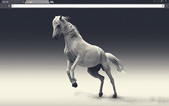 White Mare Google Chrome Theme
