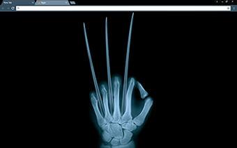 Wolverine X Ray Google Chrome Theme