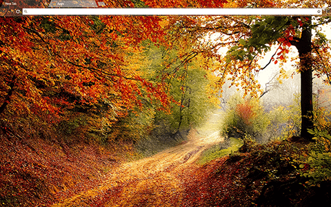 Autumn Road Google Chrome Theme