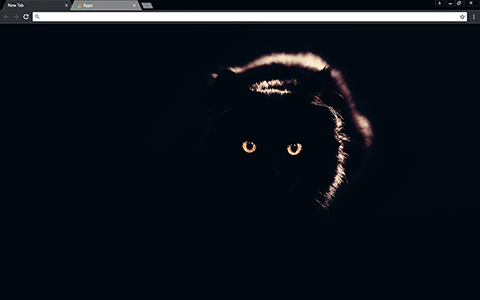Black Cat Google Chrome Theme