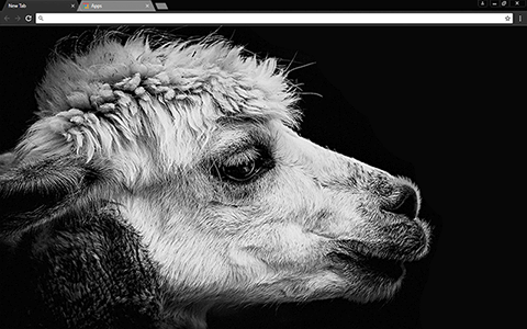 Black Lama Google Chrome Theme