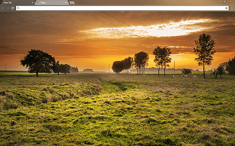 Countryside Google Chrome Theme