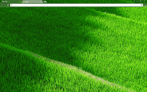 Grassy Terraces Google Chrome Theme
