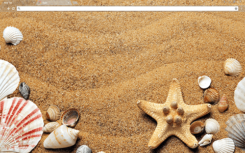 Sea Shells Google Chrome Theme