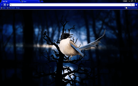 Blue Bird Google Chrome Theme