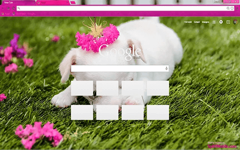 Free Cute Puppy Google Chrome Theme