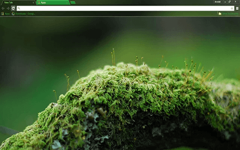 Free Mossy Oak Google Chrome Theme