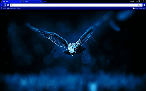 Free Night Owl Google Chrome Theme