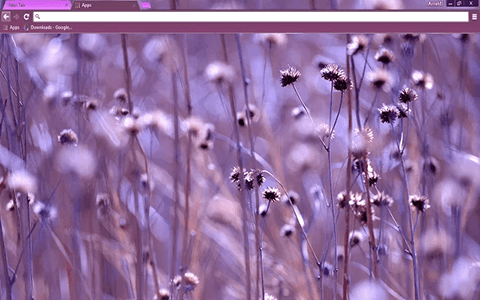 Free Purple Ambiance Google Chrome Theme