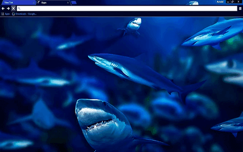 Free Sharks Google Chrome Theme