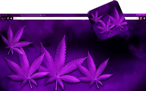 Free Weed PurpleHaze Google Chrome Theme