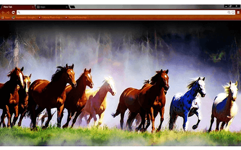 Free Wild Horses Google Chrome Theme
