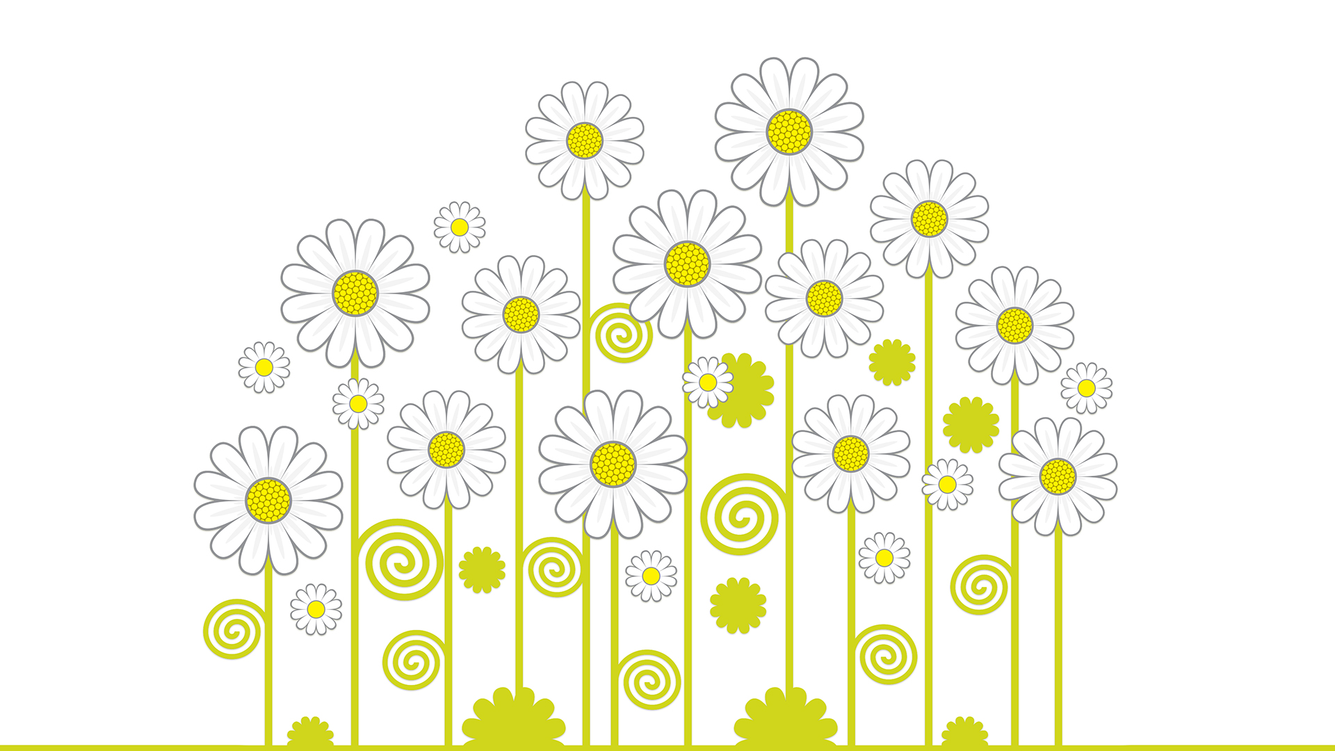 free daisies chromebook wallpaper ready for download
