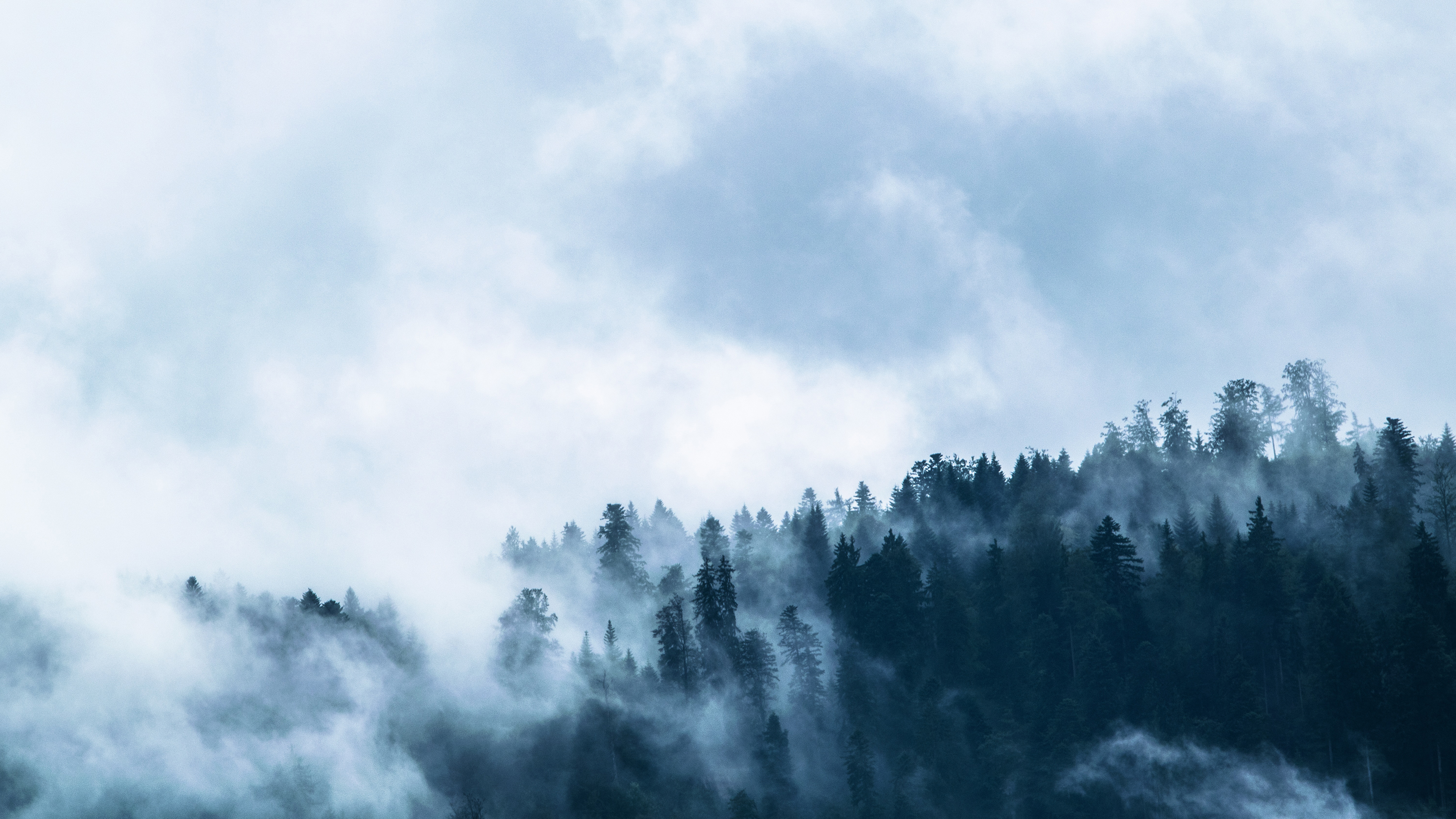 free foggy chromebook wallpaper ready for download