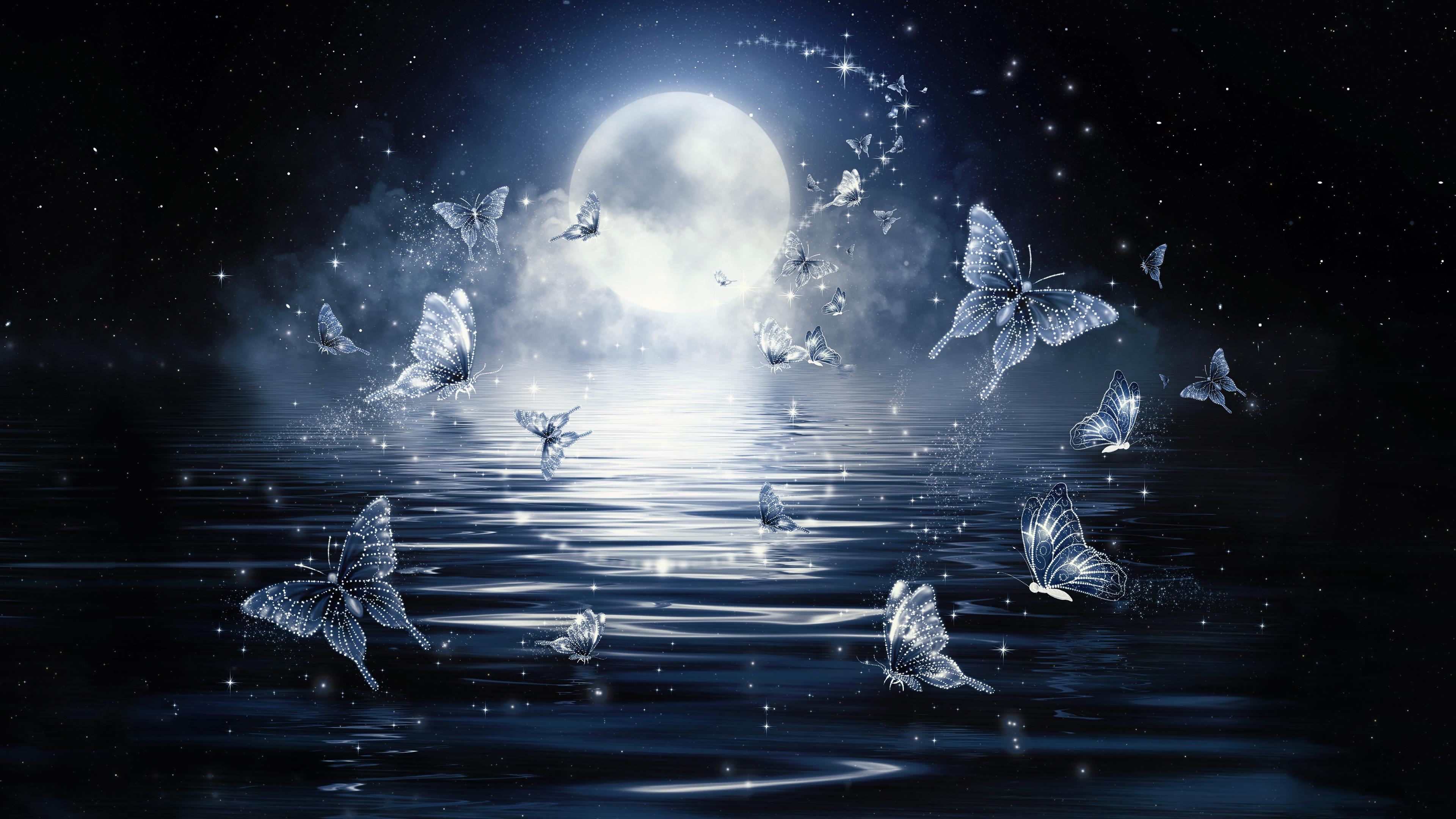 Moon Butterflies Chromebook Wallpaper