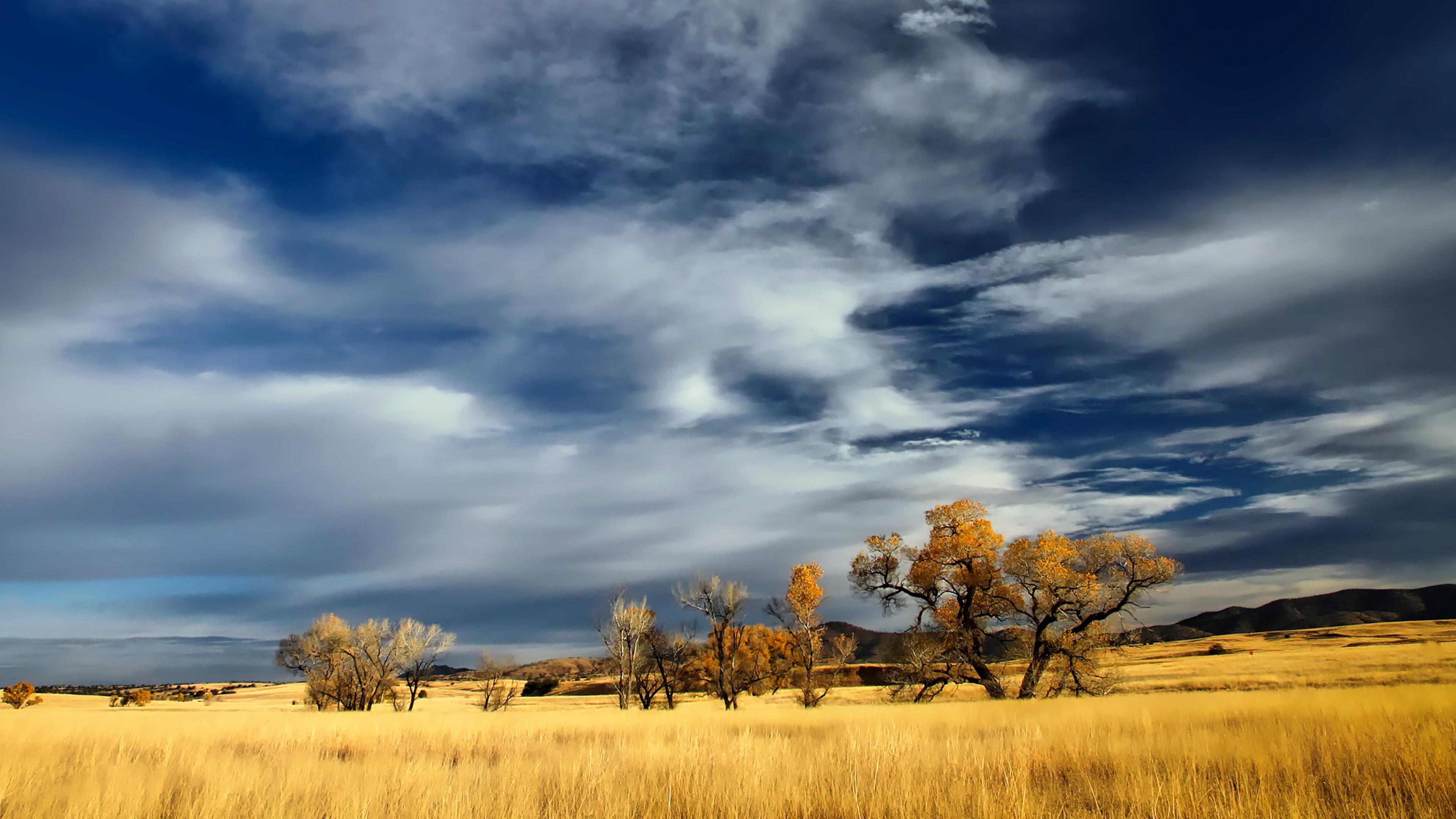 Patagonia Chromebook Wallpaper
