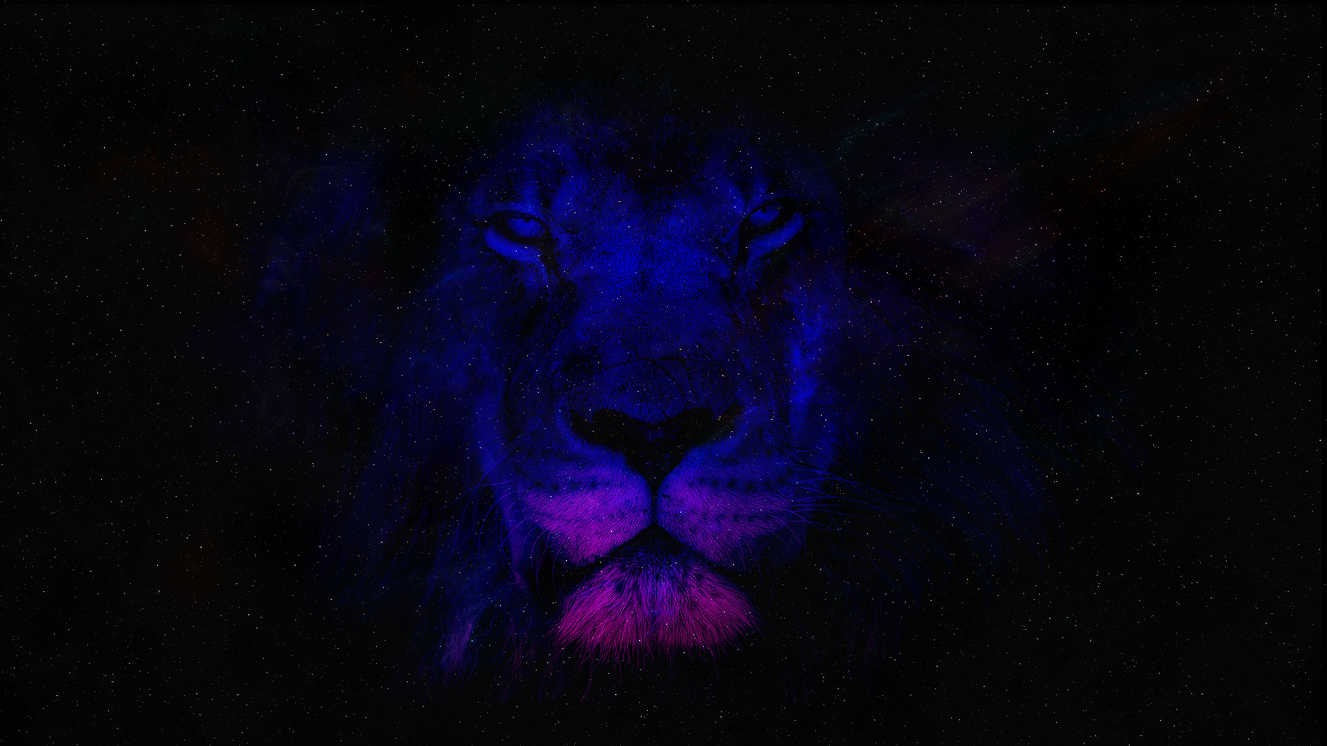 free space lion chromebook wallpaper ready for download